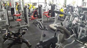$9.95/ week Gym membership Nuriootpa Barossa Area Preview