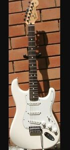Looking for White Mexican Squire Strat