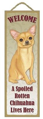 """Spoiled Rotten Chihuahua Lives Here Sign 5"""" x 15"""" Plaque Gift pet dog"""
