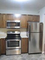 LARGE 2 BEDROOM CONDO STYLE APARTMENT 125 Joyce Ave.