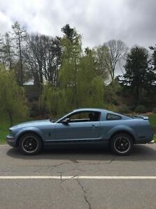 2006 Ford Mustang Pony Package Coupe (2 door)