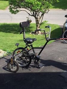 adapted bike extension