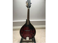 ELECTRIC ACOUSTIC MANDOLIN, EXCELLENT CONDITION, PLAYED ONCE