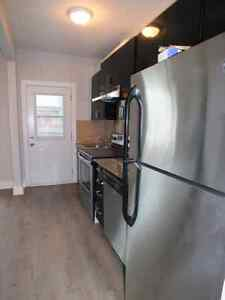 Newly Renovated 4 bdrm - Carleton/Lansdowne -Sept 1