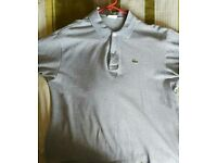 Lactate polo shirt size7 XL
