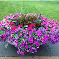 Need a landscaper for your gardens?