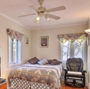 Good ceiling fan, good condition
