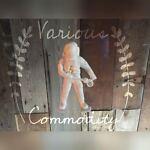 variouscommodity