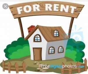 Looking for a rental house