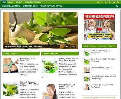 Green Tea Wp Blog - Established Profitable Turnkey Wordpress Website For Sale