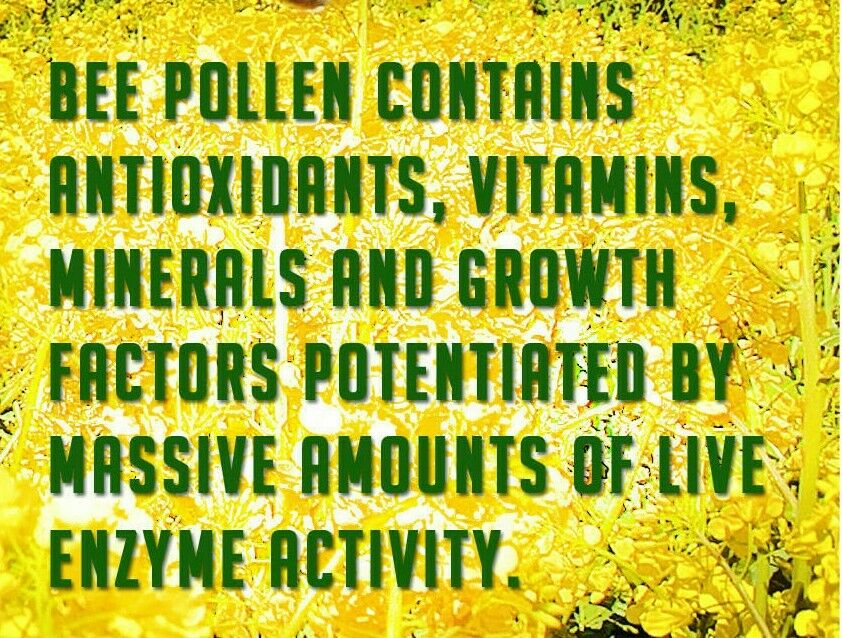 2  Badia® BEE POLLEN /Granules/Pure/Polen/de/Abeja/Granulado/Kosher GF 1.25 oz 3