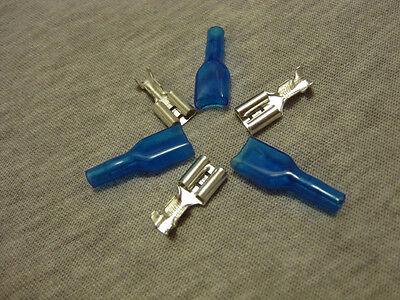 U.s. Seller- Female Spade Crimp Terminal 6.3mm Connector With Blue Case-20pcs