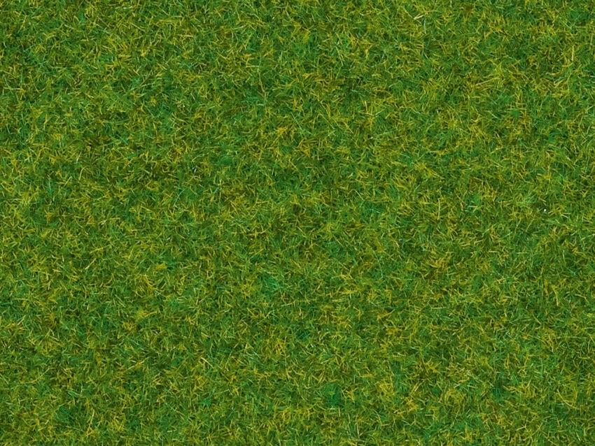 Noch 08314 Erba ornamentale, 2,5 mm, contenuto 20 g, 100 g =