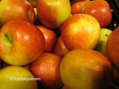 Apfelbaum /'Fuji/' gesunde Sorte winterharte Pflanze 150-170cm im Topf