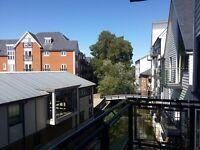 Double en-suite room in Canterbury city center