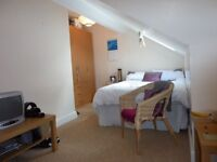 Large room to rent in professional house share
