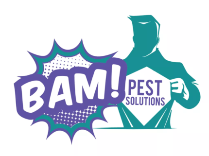 Christmas Special - BAM Pest Solutions