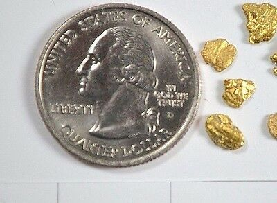 Alaskan Yukon BC  Gold Nuggets  #6 Mesh 1 Gram of Fines