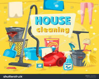 I Will Clean Your Home