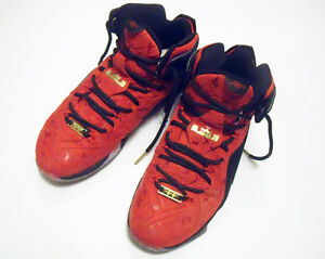 Nike LeBron 12 XII EXT Red Paisley US 10.5 Shoes