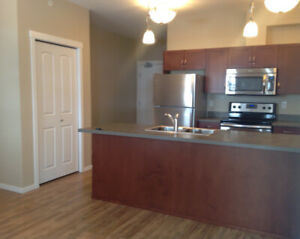 New 2 bdrm Apartment for rent in Downtown Kamloops