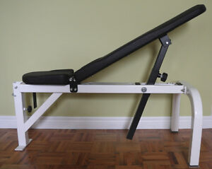 Adjustable Dumbbell Weights Bench