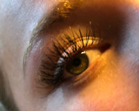 Beautiful Lash Extensions $55 - Whitby