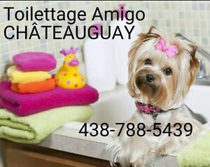 GROOMING Amigo @ CHATEAUGUAY -PET SALON