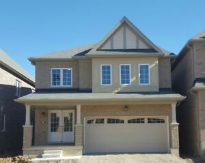 Brand New two story Detached house is available for lease