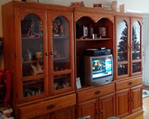 Wall Unit For Sale - Great Condition
