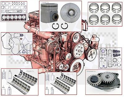 "1991.5 - 93 VIN ""C"" Dodge Cummins 5.9 Diesel engine Rebuild kit plus oil pump"