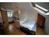 LARGE STUDIO FLAT- VERY CENTRAL POSITION