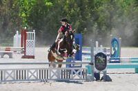 Children's and Adult's Riding Lessons