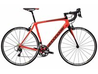 Cannondale Synapse - Full Carbon Road Bike