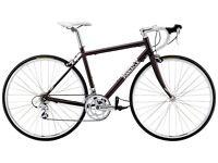 Ladies Pinnacle Gabbro Road Bike