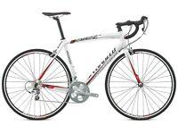 Specialized Elite Allez (56 cm) - Large Bike