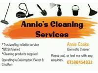 Annie's Cleaning Services *BICSc trained*
