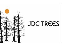 JDC Trees - Tree Works and Garden Maintenance. Tree surgery, strimming, mowing, hedges, fencing.