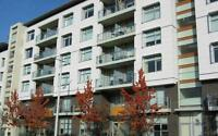 Two Bedroom/One Bathroom For Rent at False Creek Residences -...