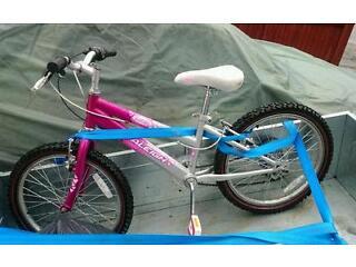 20 inch wheel Raleigh girls bike