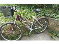 Purple Ladies Aluminium Bike with free accessories,excellent condition