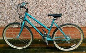 Atlanta Mystery Woman's Bike