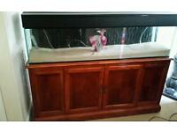 Very large sideboard with fish tank