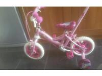 Pony bike with removal parent handle