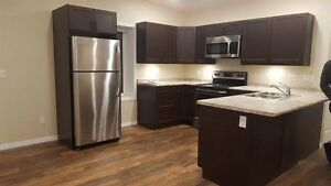 2 bedroom apartment in Elm creek Manitoba