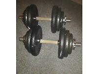 Dumbbells 38kg cast iron set