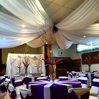 CEILING DRAPE RENTAL KIT $160.00