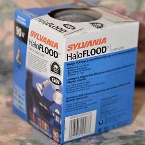 Halogen Floodlight, Outdoor Kingston Kingston Area image 1