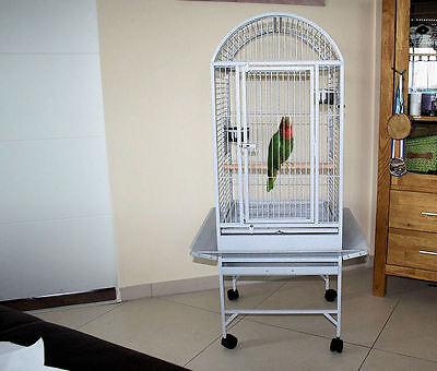 MyPets® Vogelvoliere GALACTIC CAGE XL Papageienkäfig Voliere Käfig Vogelkäfig
