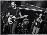 Soulful Singer/Songwriter Seeks Virtuosic Guitarist for Live Band